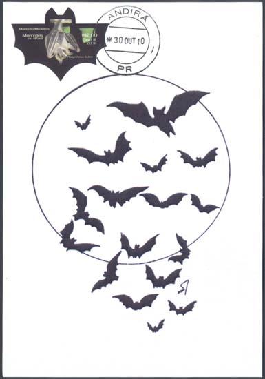 27 morcegos famílias que ocorrem no brasil